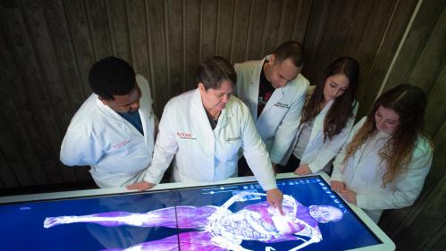 students around a virtual cadaver